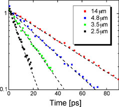 Decay of spin polarization at room temperature for different grating wavevectors